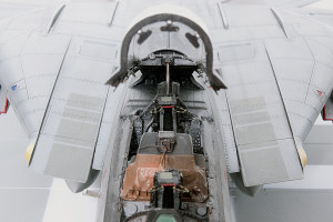 Plastic model airplane kit. F-14D (22)
