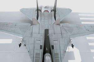 Plastic model airplane kit. F-14D (24)