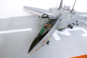 Plastic model airplane kit. F-14D (32)