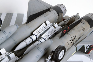 Plastic model airplane kit. F-14D (43)