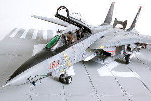 Plastic model airplane kit. F-14D (46)