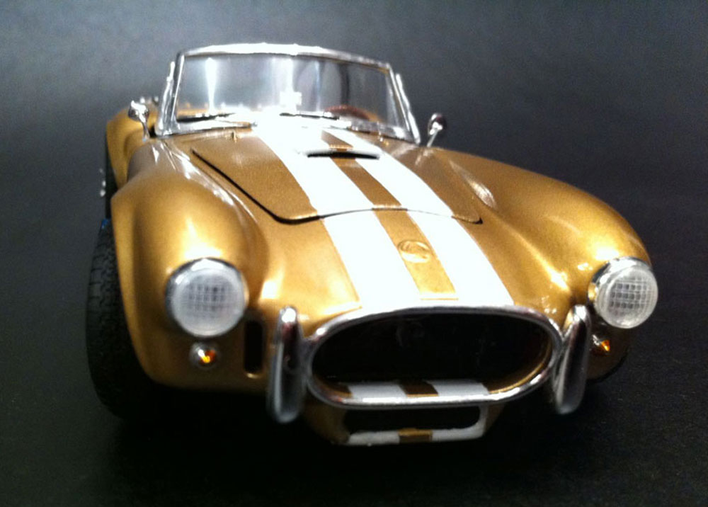car model kits for adults