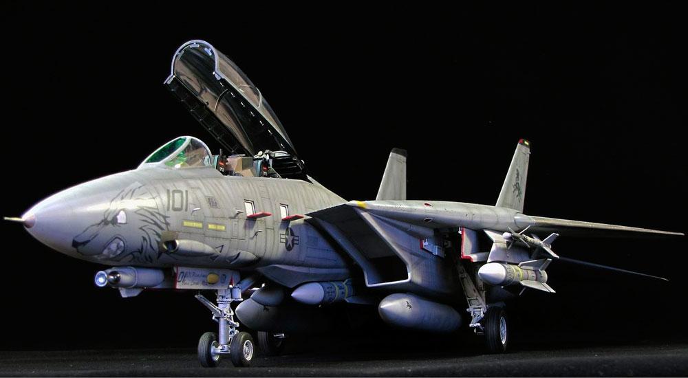 aircraft model F-14D